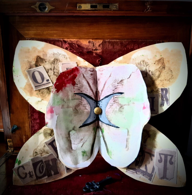Butterfly Theatre Booklet A Tale of Confinement layers inside