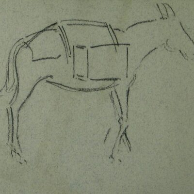 LDBTH:341v - Donkey