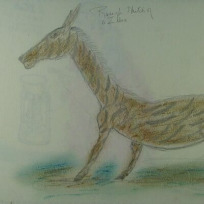 Rough Sketch of a Zebra