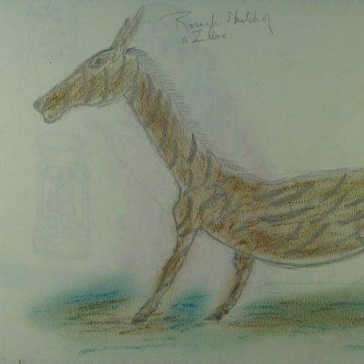 LDBTH:393v - Rough Sketch of a Zebra