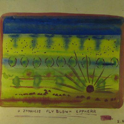 LDBTH:299 - A Japanese Fly Blown Eppherr
