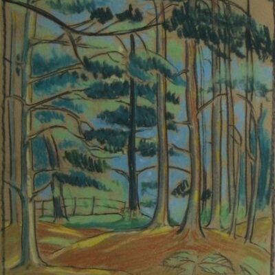 LDBTH:30 - Wooded Landscape