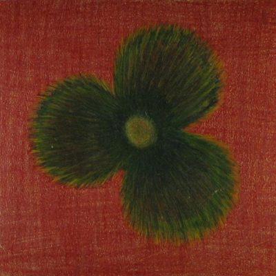 LDBTH:31 - Spiritualist Flower