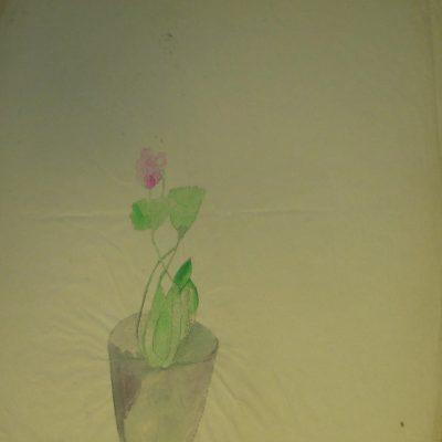 LDBTH:434 - Pot Plant