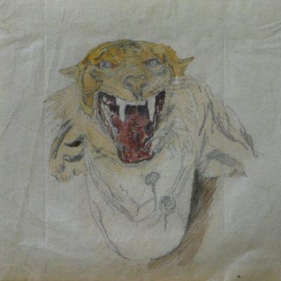 LDBTH:498 - Tiger