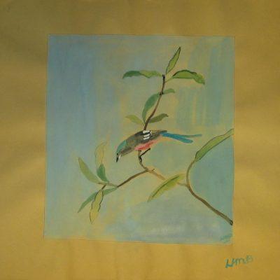 LDBTH:558 - Jay in a Tree
