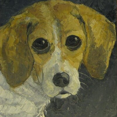 LDBTH:801 - Dog's Head