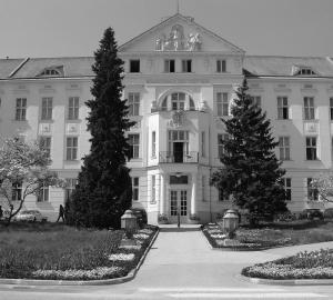 Vienna Asylum - New Facility